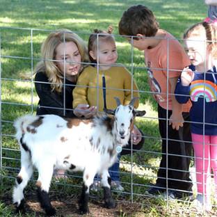 Jeffery goat with kids.jpg