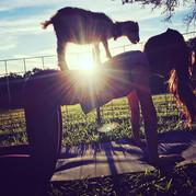 Goat Yoga Sunset.jpg