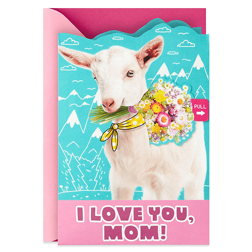 Mother's Day Goat Yoga Surprise - $28 per person