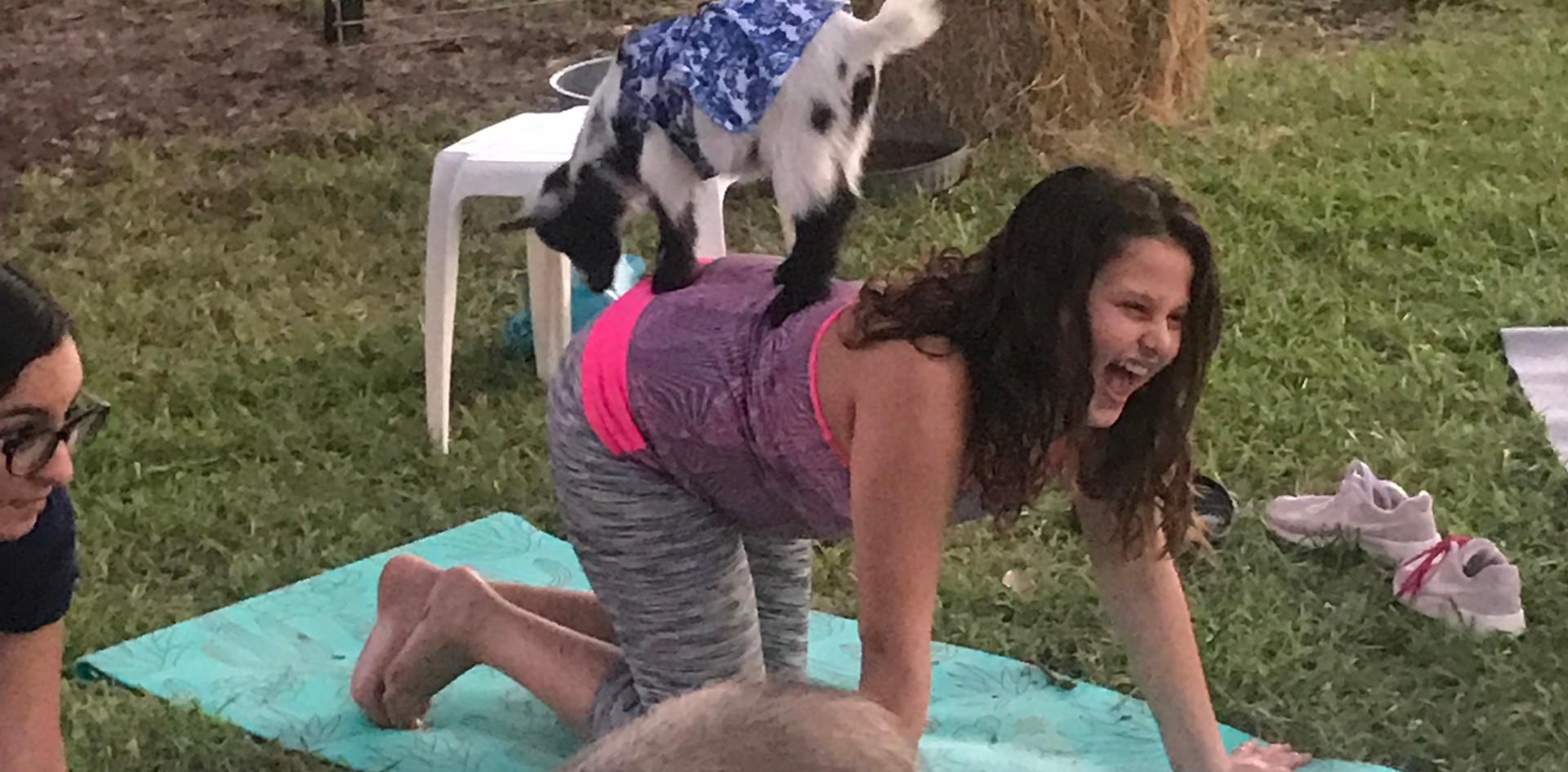 Birthday Party Goat Yoga