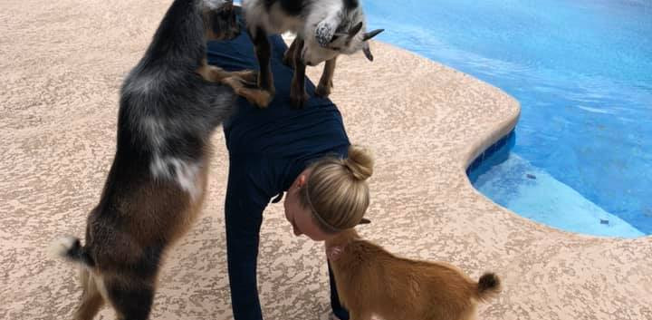 Tiffany with Baby Yoga Goats.jpg