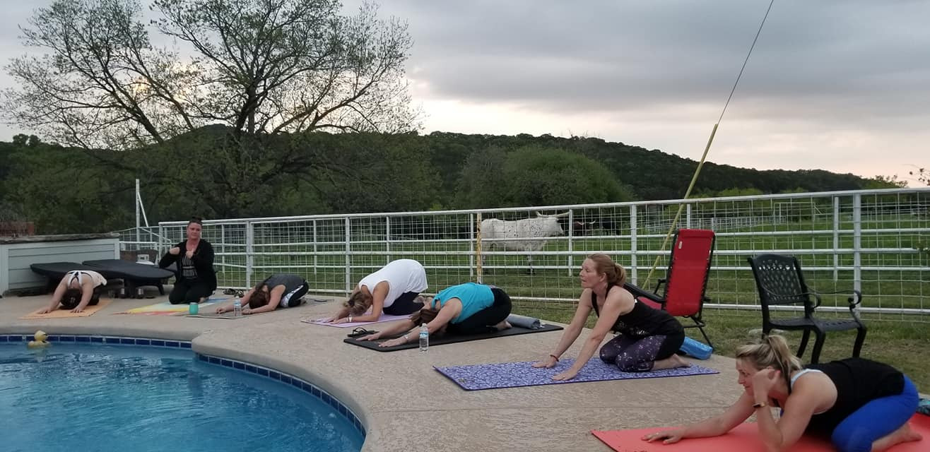 Yoga and Long Horns.jpg