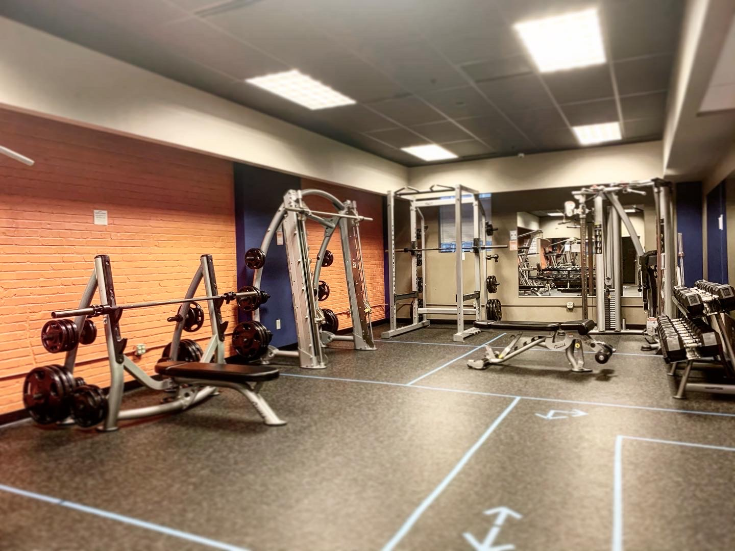 Free weights and weight machines