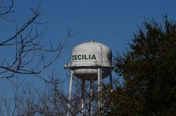 CECILIA TOWER.JPG