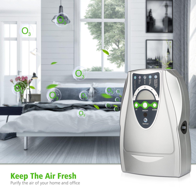 Generador de ozono 500 mgs/h