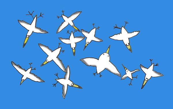 Gulls Flying.jpg