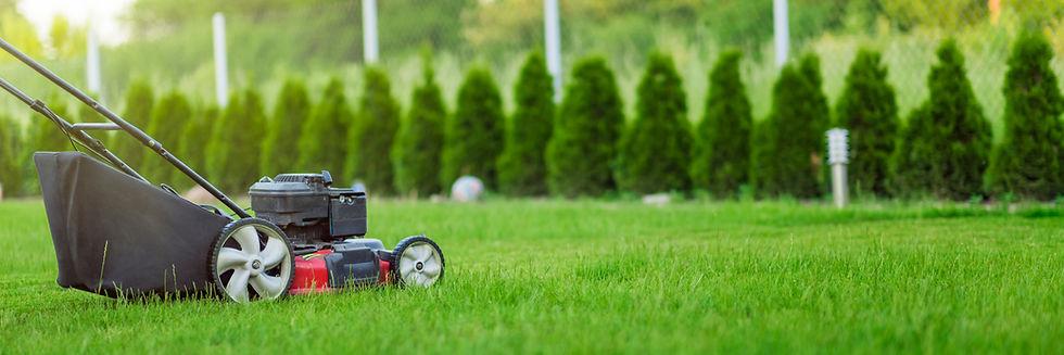 Lawn mower cutting green grass.jpg