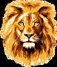 kisspng-lionhead-rabbit-clip-art-lion-fa