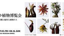 ウルトラ植物博覧会