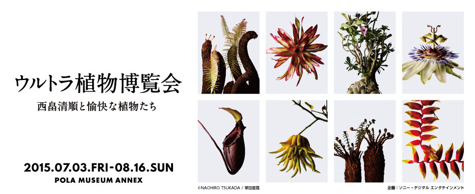 nishihataTen_Banner_016.jpg