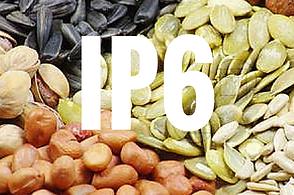 IP6.png