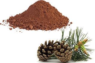 pine-bark-extract-vs-pycnogenol.jpg