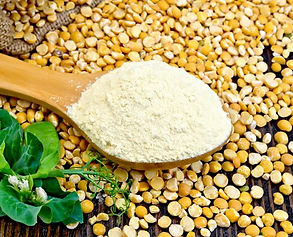pea-flour-on-Spoon__FocusFillWzcyMiw0Njg