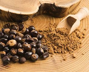 bigstock-Guarana-Seeds-And-Powder-153861