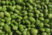 beans-228870_1280-1170x500.jpg