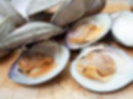 stuffed-clams-3-1024x768.jpg