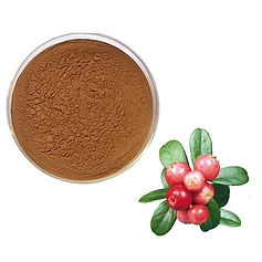 rosehip-extract-powder-500x500.jpg