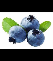 bilberry-extract-powder.jpg