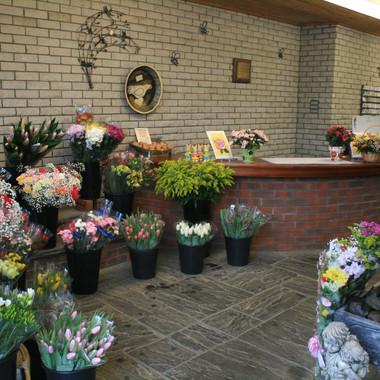 Shop Flower Display