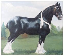 Kate Gabriel shire horse pet portrait painting