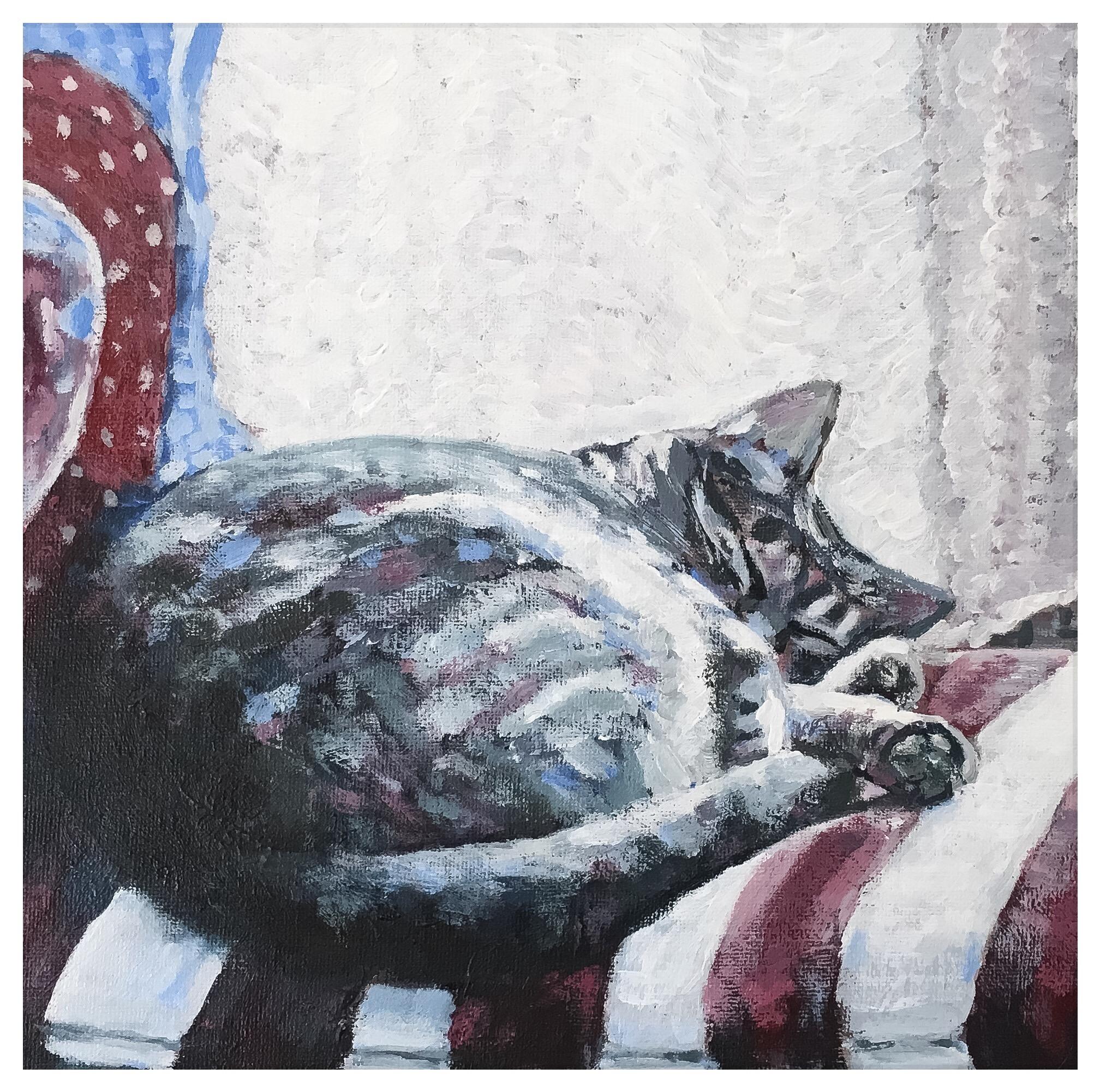 Kate Gabriel cat pet portrait Lily Sleeping
