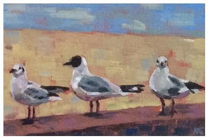 Kate Gabriel animals seagulls1