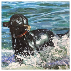 Kate Gabriel dog pet portrait painting Molly in Sea