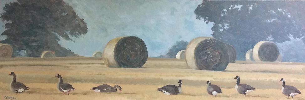 Kate Gabriel Artist Norfolk Geese Landscape