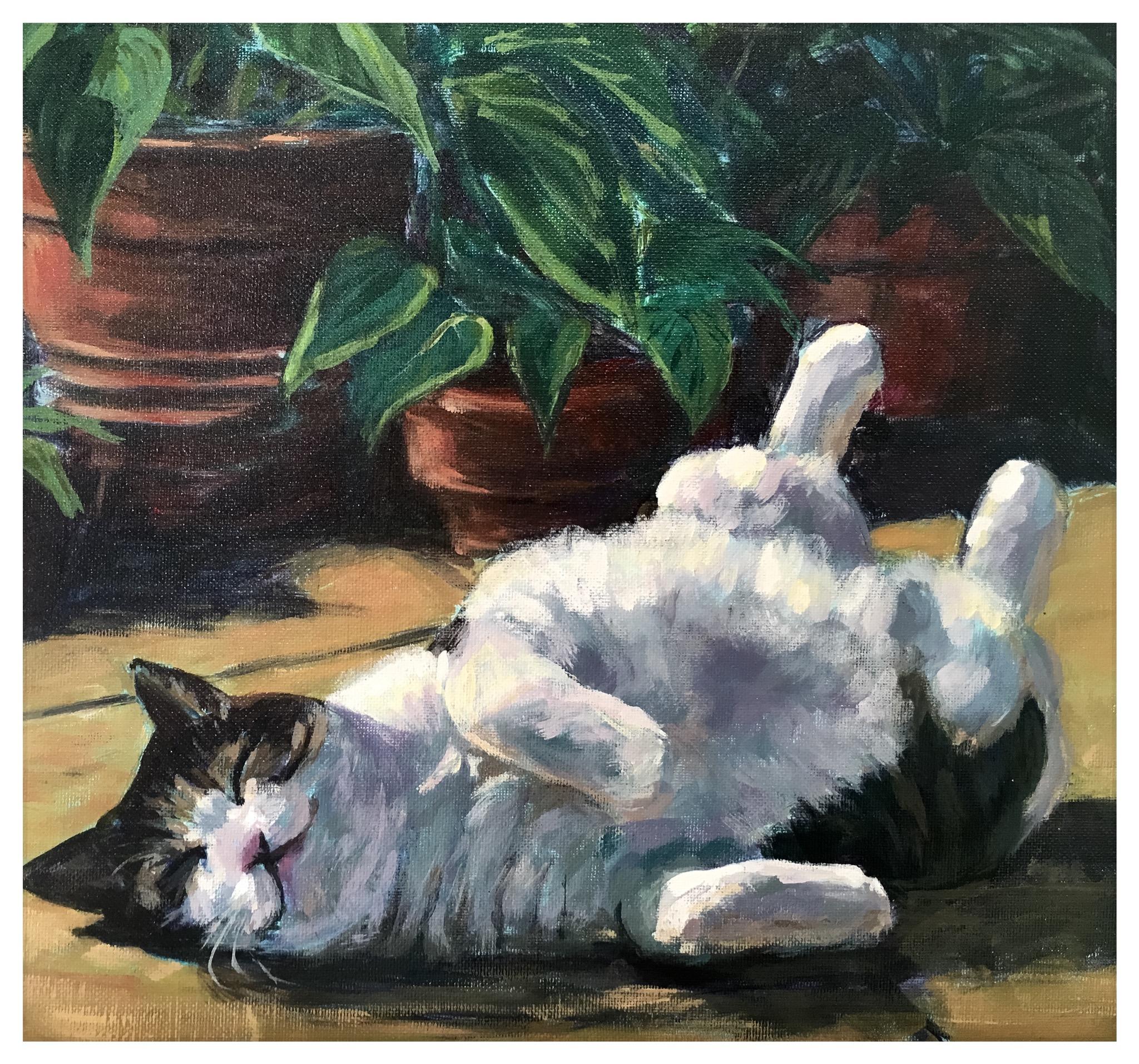 Kate Gabriel cat pet portrait Norman Sunbathing sleeping