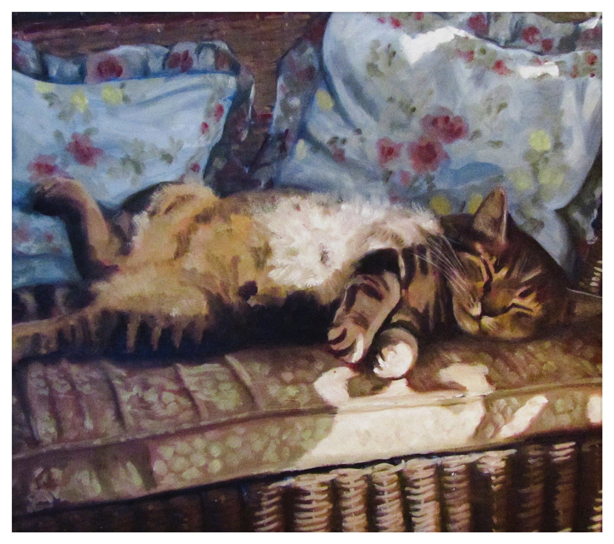 Kate Gabriel cat pet portrait Ben Sleeping