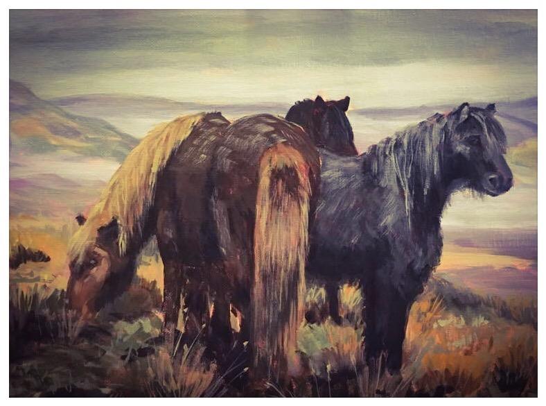 Kate Gabriel ponies horse portrait