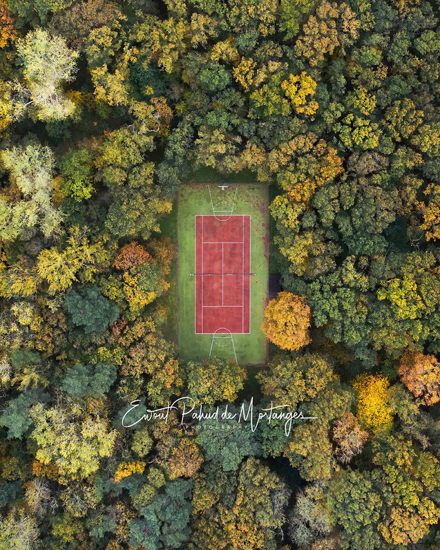 Autumn court 2020