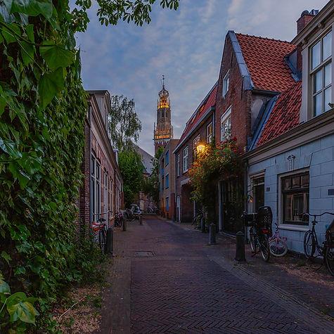 Haarlem_tag_website-3.JPG