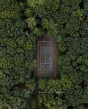 Forest court