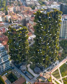 Urban Nature II