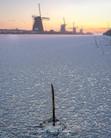 Dutch Winter 2021