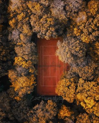 Fall court