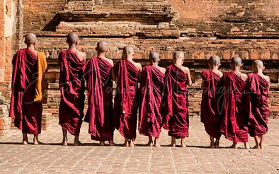 Myanmar's novice Buddhist monks