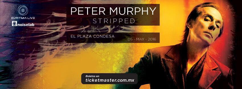peter murphy1