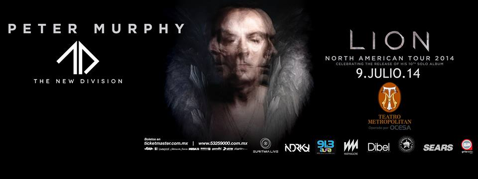 petermurphylion9jul14