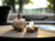 garlic-2881210__340.jpg