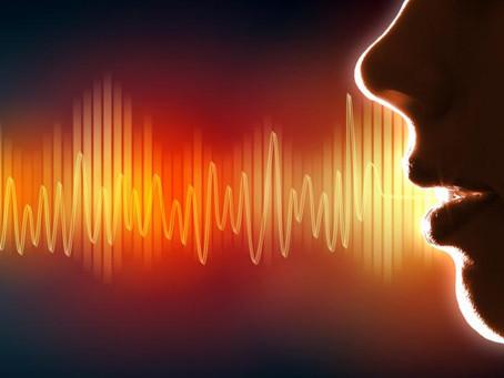 Qu'est-ce que le son, voyage au centre de l'audition