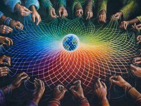 Des scientifiques expliquent comment le champ magnétique terrestre relie tous les êtres vivants
