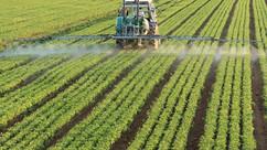 Pesticides : ce qu'ils font vraiment dans votre corps (nouvelles preuves...)