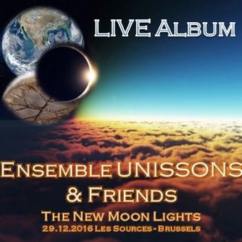 The New Moon Lights