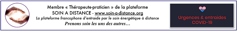 www.soin-a-distance.org.png