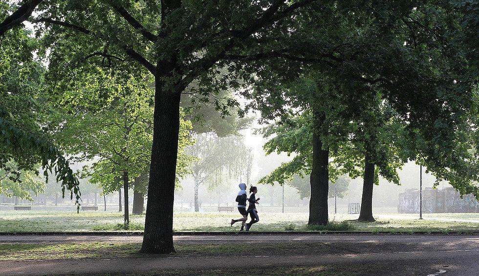 jogging-4211946_1280.jpg