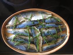 mackerell_enviecatering