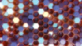 hive_1.JPG