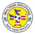 soccer logo dolphins.PNG